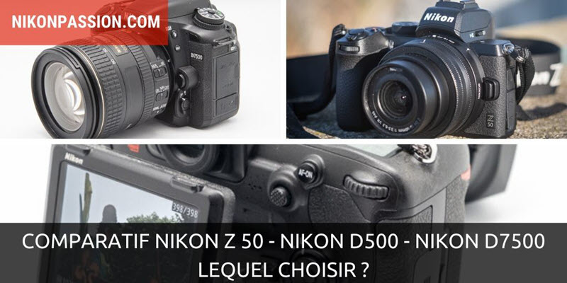 Comparatif Nikon Z 50 vs Nikon D500 vs Nikon D7500