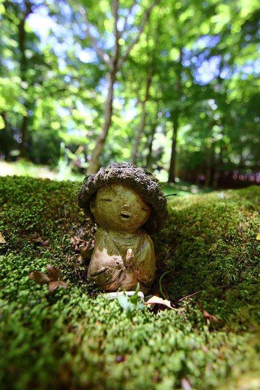 Photo (C) Kazuyuki Hagiwara faite avec le TOKINA 11-20 mm