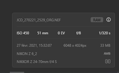 Support des Nikon Z 6II et Z 7II dans Luminar AI Update 2