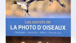 Comment photographier les oiseaux : matériel, réglages, approche, les secrets d'Erwan Balança