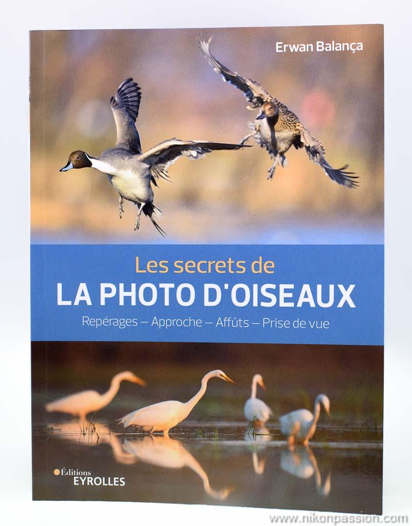 réussir vos photos d'oiseaux : matériel, réglages, approche, les secrets d'Erwan Balança