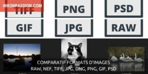 Comparatif formats d'images : RAW, NEF, TIFF, JPG, DNG, PNG, GIF, PSD